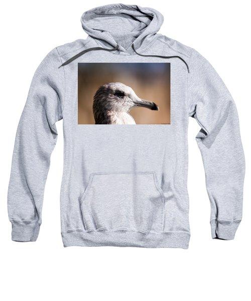 The Best Side Of The Gull Sweatshirt