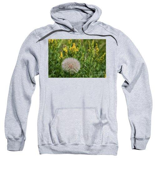 The Dandelion  Sweatshirt
