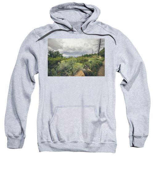 The Desert Comes Alive Sweatshirt