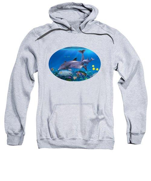 The Dolphin Family Sweatshirt by Glenn Holbrook