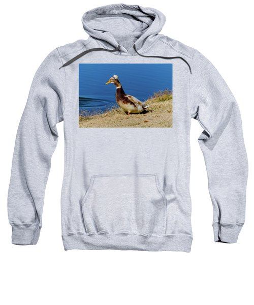 The Duck With The Pillbox Hat Sweatshirt