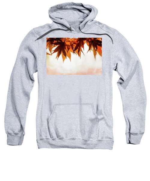 The Eaves Of Season Sweatshirt