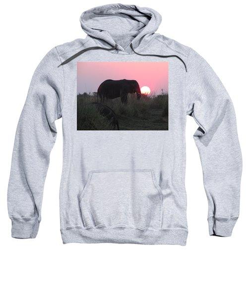 The Elephant And The Sun Sweatshirt