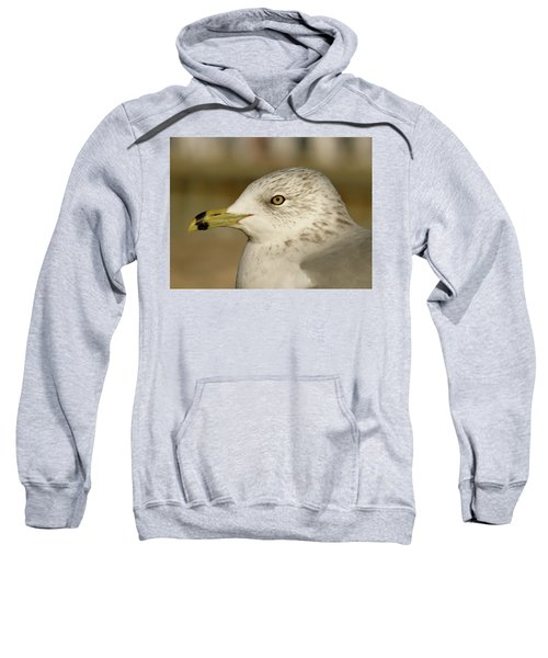 The Eye Of The Seagull Sweatshirt