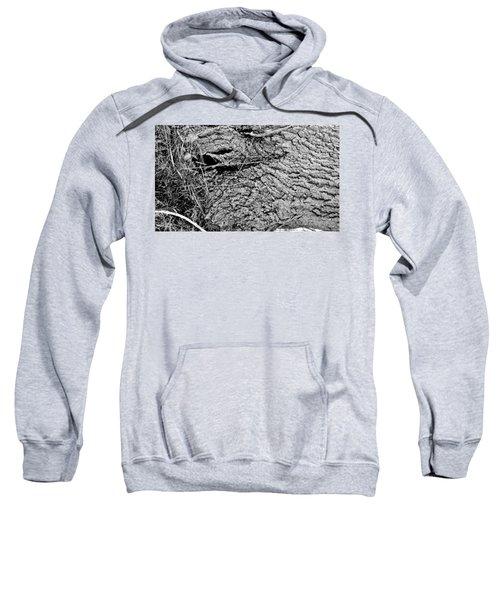 The Fallen - Dragon Eye Sweatshirt