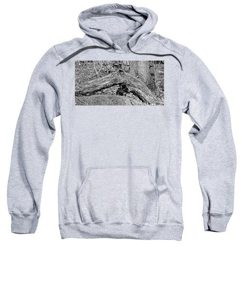 The Fallen - Dragon Sweatshirt