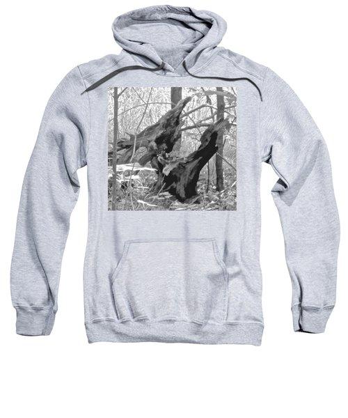 The Fallen - Dragon Skull Sweatshirt