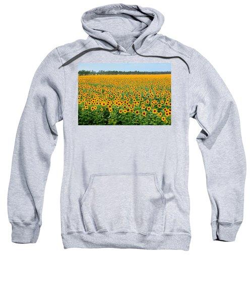 The Field Of Suns Sweatshirt