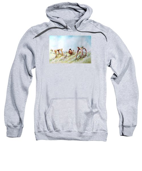 The Fields Of Artemis Sweatshirt