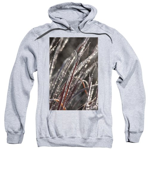 The First Frost Sweatshirt