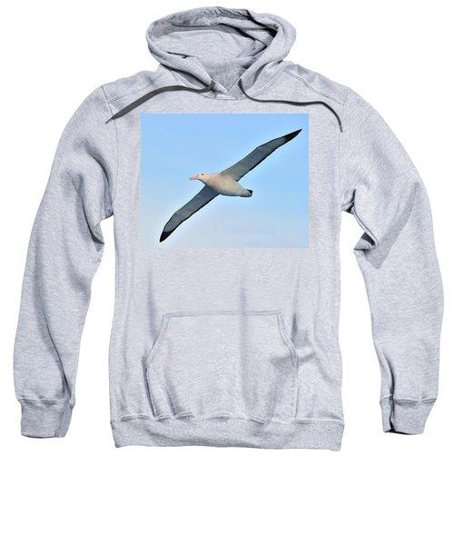 The Greatest Seabird Sweatshirt by Tony Beck