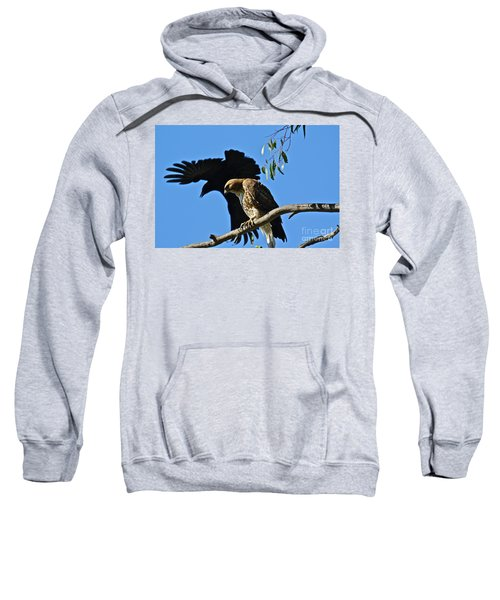 The Harasser Sweatshirt