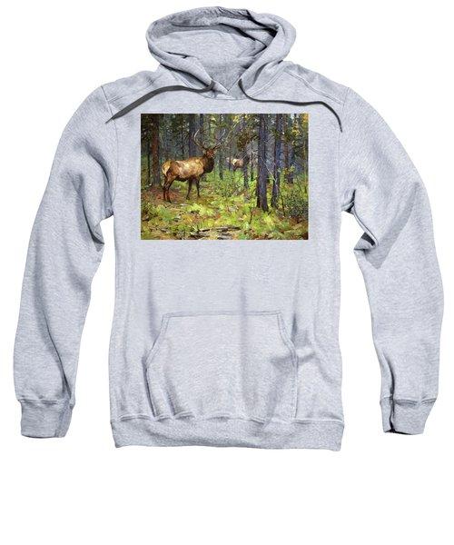 The Herd Bull Sweatshirt