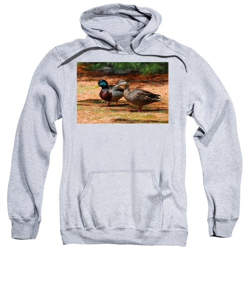 The Honeymooners - Mallard Ducks  Sweatshirt