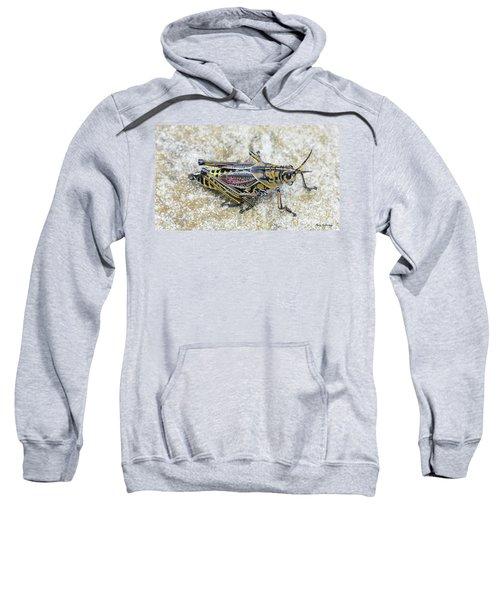 The Hopper Grasshopper Art Sweatshirt by Reid Callaway