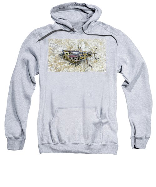 The Hopper Grasshopper Art Sweatshirt