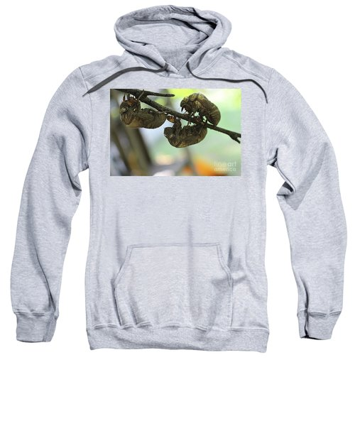 The Infestation Sweatshirt