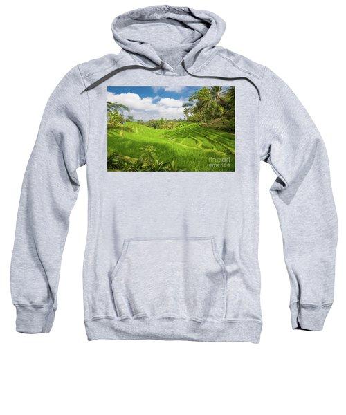 The Island Of God #14 Sweatshirt