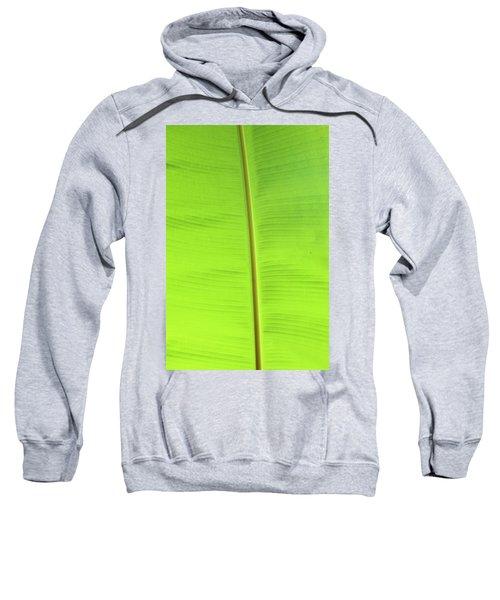The Jungle Illuminated Sweatshirt
