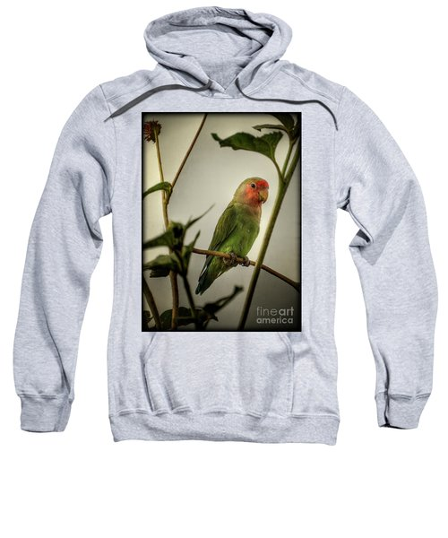 The Lovebird  Sweatshirt by Saija  Lehtonen