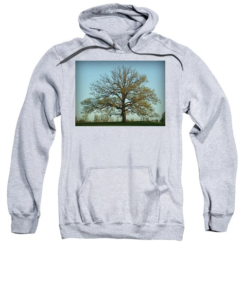 The Mighty Oak In Spring Sweatshirt
