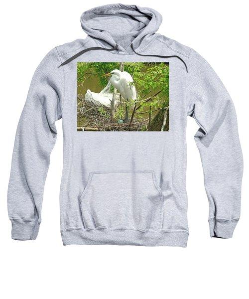 The Nest Sweatshirt