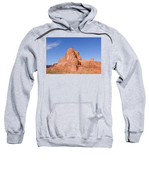 The Organ Sweatshirt