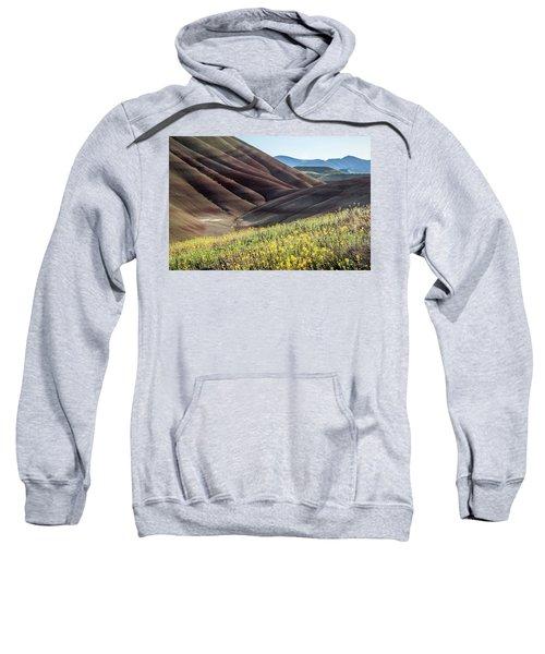 The Painted Hills In Bloom Sweatshirt