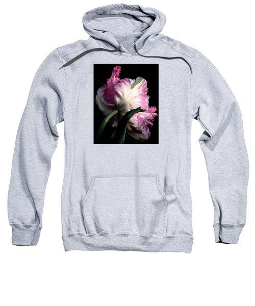 The Parrot Tulip Queen Of Spring Sweatshirt