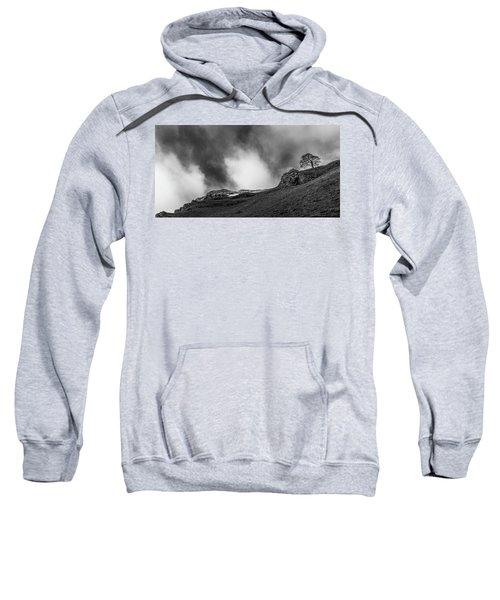 The Peak Tree Sweatshirt