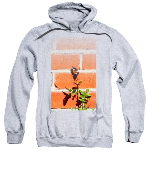 The Poetry Of Ordinary Things Sweatshirt