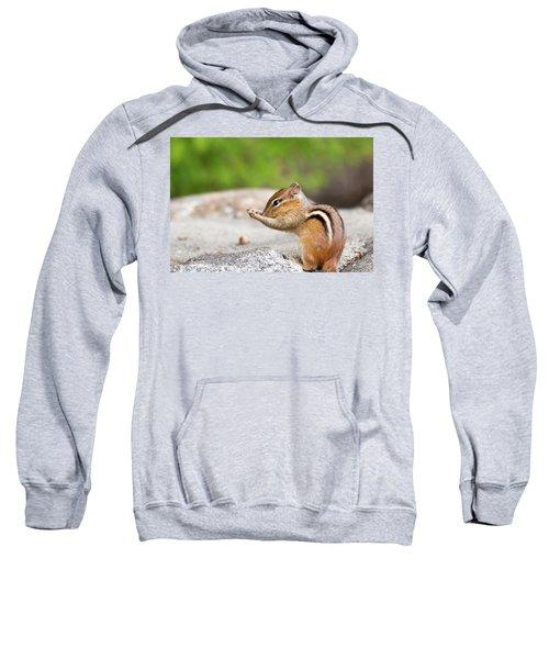 The Praying Chipmunk Sweatshirt