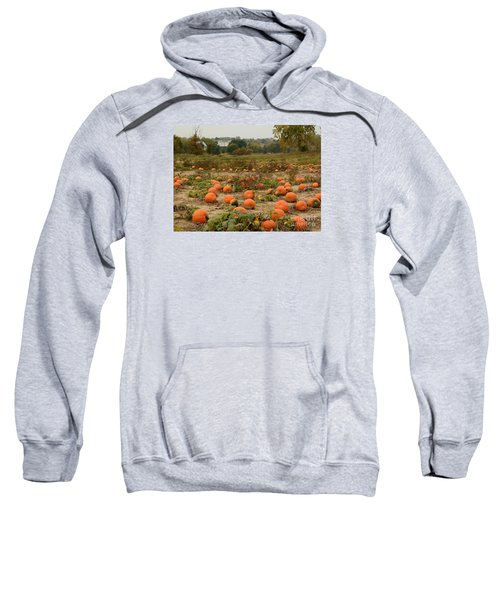 The Pumpkin Farm Two Sweatshirt