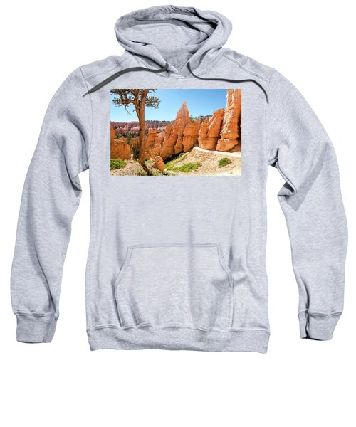 The Queens Garden Trail Sweatshirt