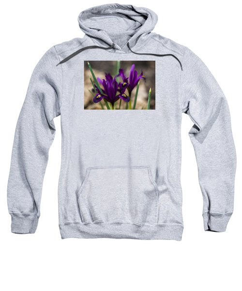 The Rise Of The Early Royal Dwarf Iris Sweatshirt