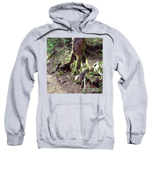 The Root Of The Matter Sweatshirt