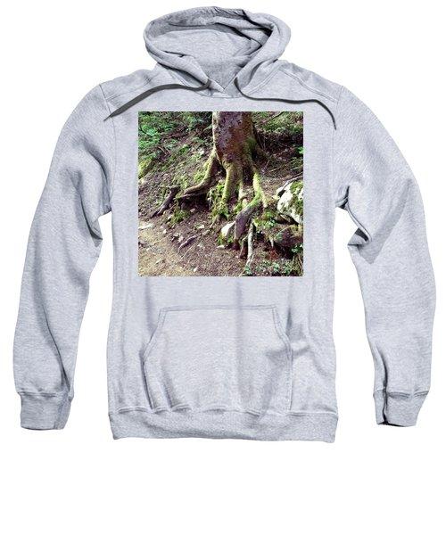 The Root Of The Matter Sweatshirt
