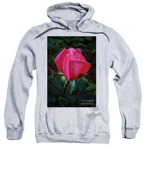 The Rose Bud Sweatshirt