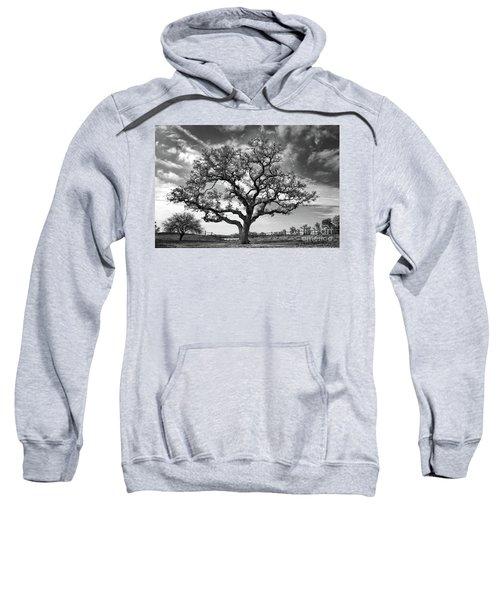 The Sentinel Bw Sweatshirt