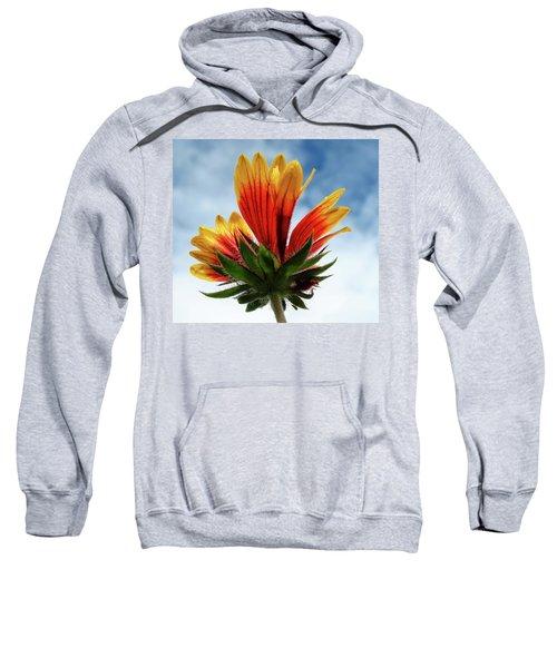 The Sky Is The Limit Sweatshirt