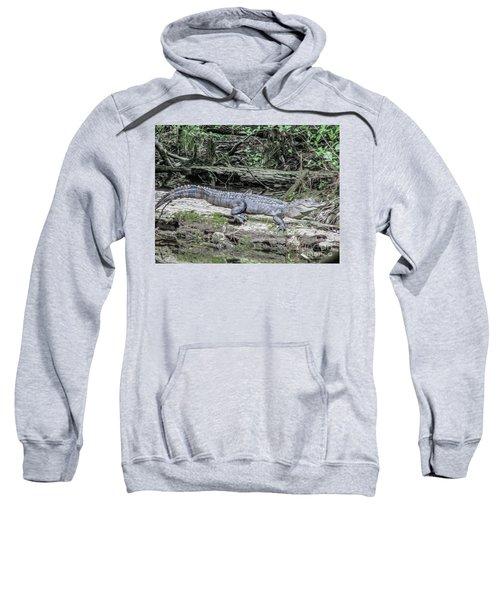 The Smiling Gator Sweatshirt