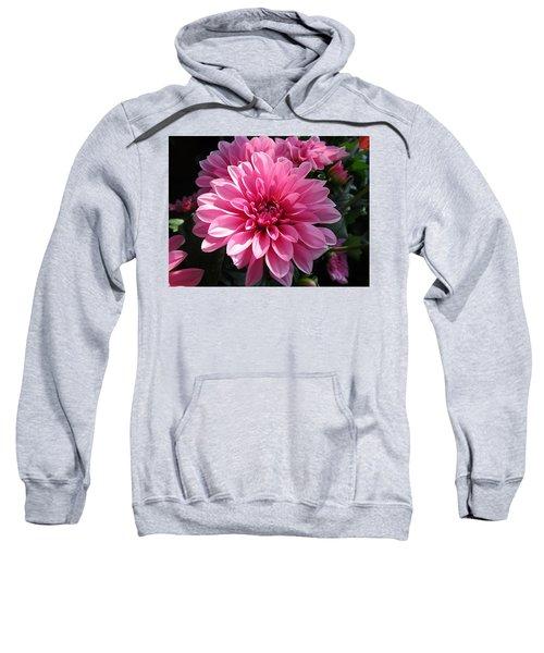 The Sweetest Sweatshirt