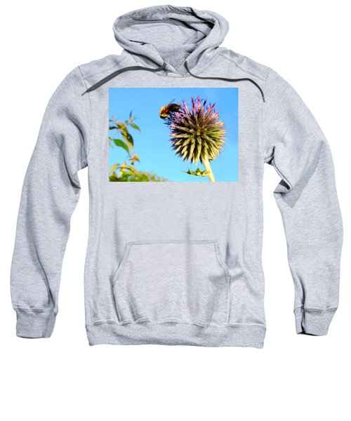 The Thistle And The Bee. Sweatshirt