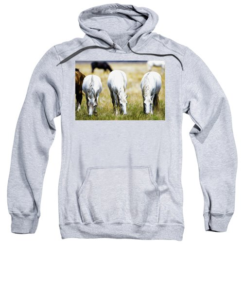 The Three Amigos Grazing Sweatshirt