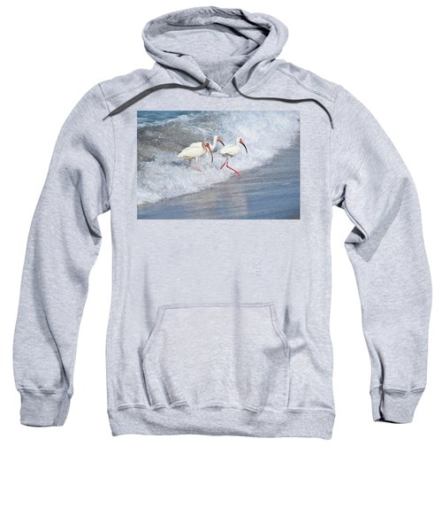 The Tide Of The Ibises Sweatshirt
