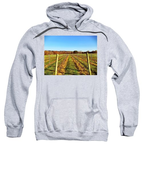 The Vineyard Sweatshirt