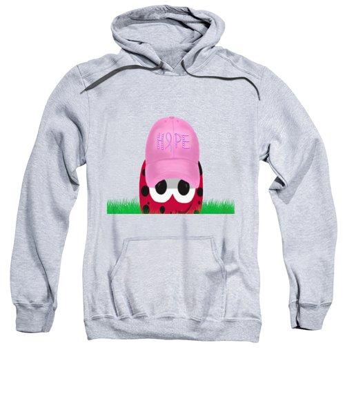 The Warrior Ladybug Sweatshirt