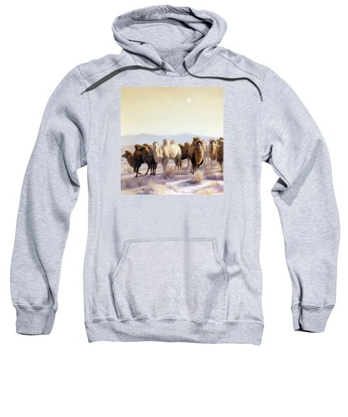 The Winter Solstice Sweatshirt