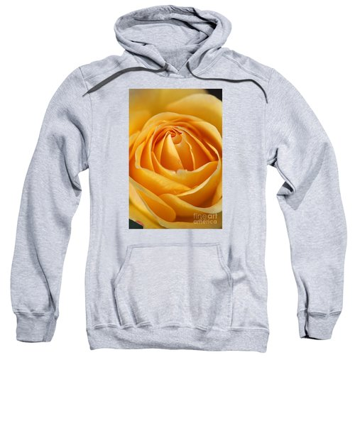 The Yellow Rose Sweatshirt