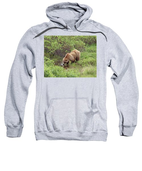 Thirsty Grizzly Sweatshirt